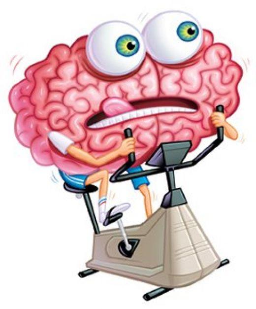 Влияние приборов внешней памяти на человека: сможем ли мы сохранить свою память